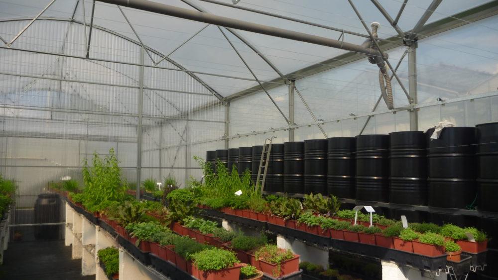 Serre Bioclimatique