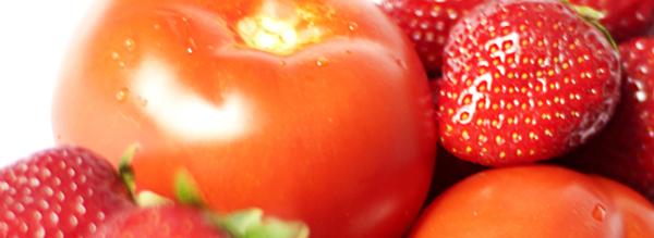 fraise tomate